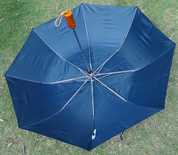 2-section umbrella-F2U010b